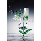 Fototapety Crystal Flower rozměr 115 cm x 175 cm