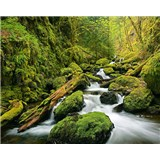 Vliesové fototapety Green Canyon Cascades
