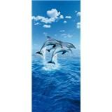 Fototapety Three Dolphins rozměr 86 cm x 200 cm