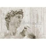 Vliesové fototapety David Street Art rozměr 366 cm x 254 cm