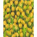 Vinylové tapety na zeď Allure tulipány žluté