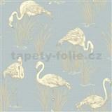 Vinylové tapety na zeď Lochs and Lagoons plaměňáci modrý podklad DOPRODEJ