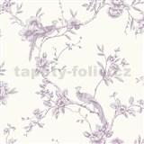 Papírové tapety na zeď Options květy s pávem fialové