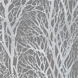 Vliesové tapety na zeď větve stromů stříbrné na šedém podkladu