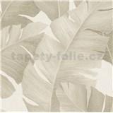 Luxusní vliesové tapety na zeď Avalon velké listy hnědé na krémovém podkladu