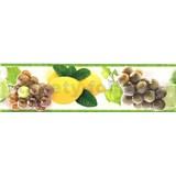 Samolepící bordura ovoce žluto-zelené 5 m x 8,3 cm