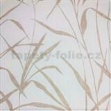 Vliesové tapety na zeď listy světle hnědé na bílém podkladu