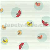 Vliesové tapety na zeď Collection ESPRIT barevní ptáčci na modrém podkladu