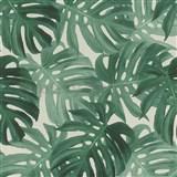 Vliesové tapety na zeď IMPOL Collection listy Monstery zelené