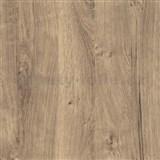 Samolepící tapeta dub ribbeck  - 90 cm x 2,1 m (cena za kus)