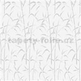 Samolepící folie d-c-fix transparentní Bamboo 45 cm x 15 m