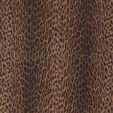 Samolepící tapety - leopard Afrika 45 cm x 15 m