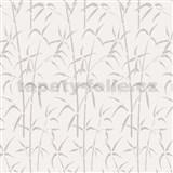 Samolepící tapeta transparentní bambus - 45 cm x 2 m (cena za kus)