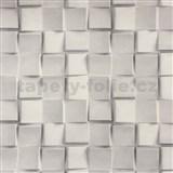 Vliesové tapety na zeď Collection 2 3D mozaika kostek šedá