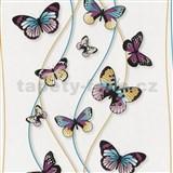 Papírové tapety na zeď Dieter Bohlen - motýli tyrkysovo-fialoví