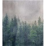 Vliesové fototapety koruny stromů rozměr 225 cm x 250 cm