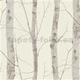 Vliesové tapety na zeď Instawalls kmeny stromů s větvemi hnědé na bílém podkladu