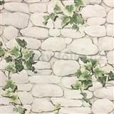 Papírové tapety na zeď kameny s břečťanem