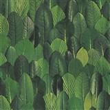 Vliesové tapety na zeď Felicita lístky zelené
