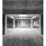 Vliesové fototapety průmyslová hala rozměr 225 cm x 250 cm