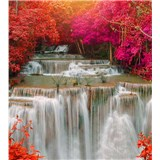 Vliesové fototapety deštný les rozměr 225 cm x 250 cm