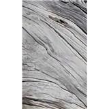 Vliesové fototapety textura stromu rozměr 150 cm x 250 cm