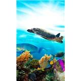 Vliesové fototapety mořské ryby rozměr 150 cm x 250 cm