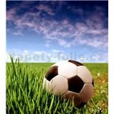 Vliesové fototapety fotbalový míč rozměr 225 cm x 250 cm