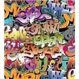 Vliesové fototapety graffiti rozměr 225 cm x 250 cm