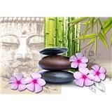 Vliesové fototapety kameny s květy rozměr 368 cm x 254 cm