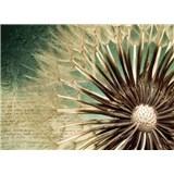 Vliesové fototapety pampeliška rozměr 254 cm x 184 cm