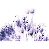 Vliesové fototapety fialové rostliny s rosou