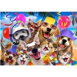 Vliesové fototapety selfie kočky a psi rozměr 368 cm x 254 cm