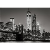 Vliesové fototapety New York rozměr 254 cm x 368 cm