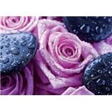 Vliesové fototapety růže a lava kameny rozměr 312 cm x 219 cm