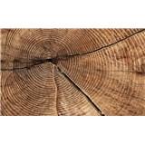 Fototapety dřevo