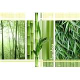 Vliesové fototapety bambus koláž rozměr 312 cm x 219 cm