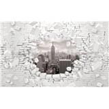 Vliesové fototapety 3D New York černo-bílý rozměr 416 cm x 254 cm