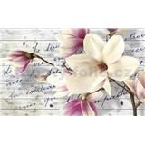 Fototapety květy magnolie rozměr 368 cm x 254 cm