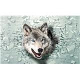 Vliesové fototapety 3D vlk rozměr 104 cm x 70,5 cm