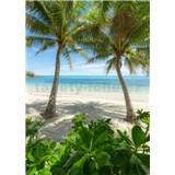 Vliesové fototapety Hefele palmová pláž, rozměr 200 cm x 280 cm