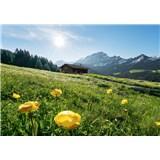 Vliesové fototapety Hefele Alpský ráj, rozměr 400 cm x 280 cm