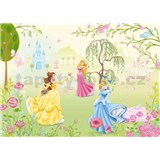 Fototapeta Disney Princeznyrozměr 184 cm x 127 cm