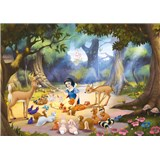 Fototapeta Disney Sněhurka rozměr 254 cm x 184 cm