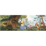 Fototapeta Disney Medvídek Pú rozměr 368 cm x 127 cm