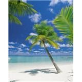 Fototapety Ari Atoll rozměr 184 cm x 254 cm
