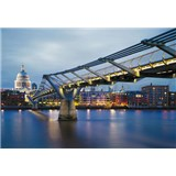 Fototapety Millennium Bridge rozměr 368 cm x 254 cm