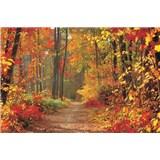 Fototapety les na podzim