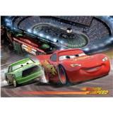 Fototapety Cars Race rozměr 254 cm x 184 cm