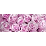 Vliesové fototapety růže růžové rozměr 250 cm x 104 cm